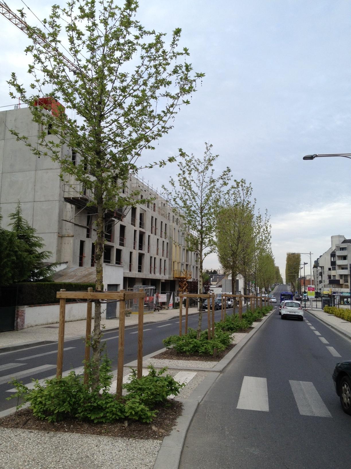 Boulevard Jean Jaurès à Joué les Tours (37)